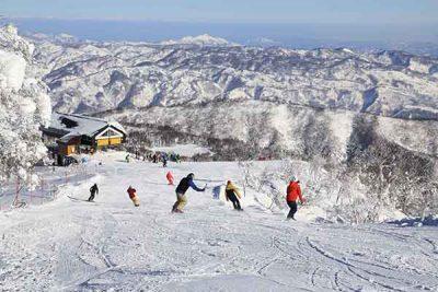 出展:野沢温泉スキー場
